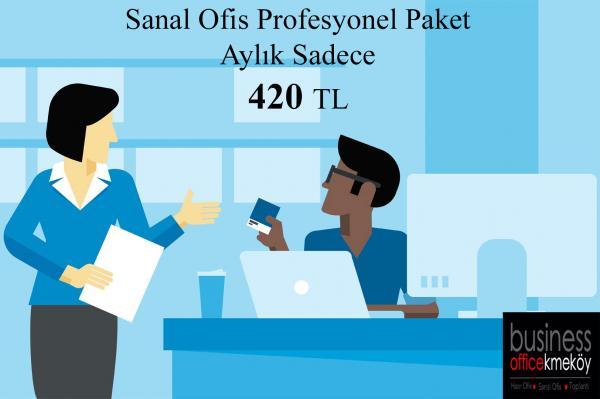 Sanal Ofis Profesyonel Paket